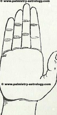 children line palmistry astrology prediction of number and gender of child
