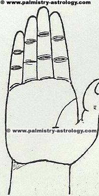 Life line palmistry astrology (41)