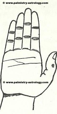 branch from head line touching heart line | Palmistry-Astrology.com