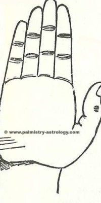 travel line palmistry astrology (1)