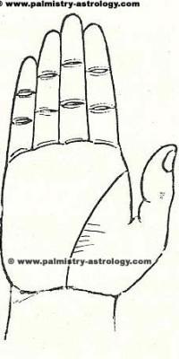 Life line palmistry astrology (55)