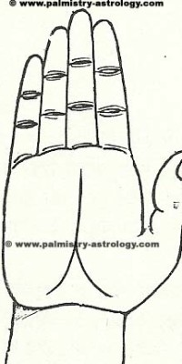 fate line palmistry astrology (50)