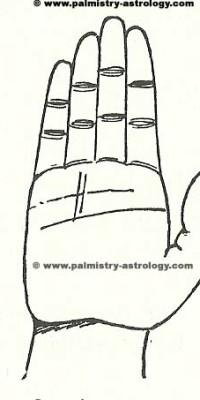 sun line palmistry astrology (44)