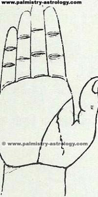 Life line palmistry astrology (57)