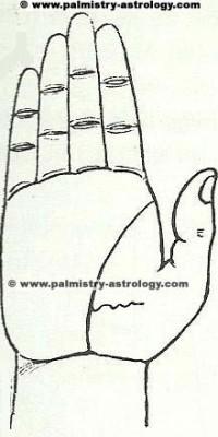 Life line palmistry astrology (60)