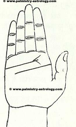 Branches on Heart Line? See predictions- Online Palmistry ...