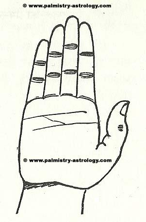 Free future predictions through palm line- online palmistry ...