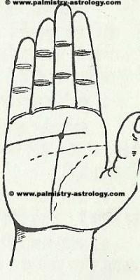 heart line palmistry astrology (39)